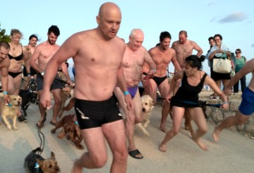 Underdog 2017 dog and owner swimming race – from the audience